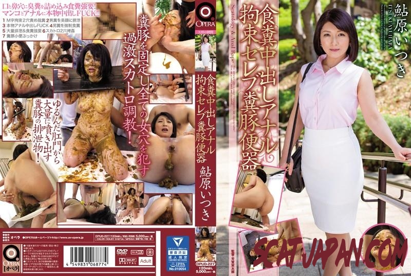 OPUD-227 Coprophagy restraint scat rape humilliation celebrity shit on human toilet Ayuhara Itsuki (371.1603_OPUD-227) [2018 | 3.66 GB]