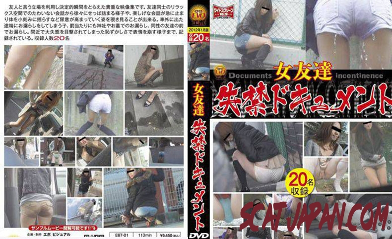 E67-01 女友達 失禁ドキュメント Friend Long Fed in the Toilet (3.1583_E67-01) [2019 | 688 MB]