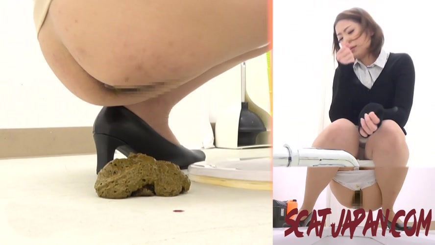 BFSL-102 トイレを通り過ぎる Spy Camera Gadid Woman In Toilet (1.2032_BFSL-102) [2019 | 261 MB]
