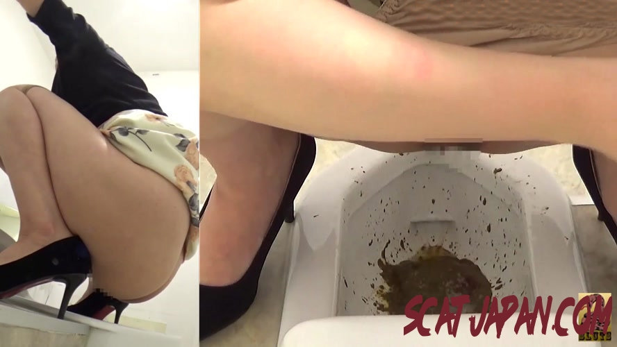 BFSR-269 Toilet Diarrhea Injection Voyeur トイレ下痢注入盗撮 (4.2762_BFSR-269) [2020 | 204 MB]